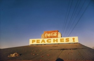 William-Egglestone-Untitled-1973-480x314-1